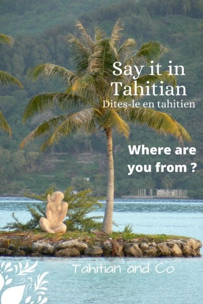 Coconut tree and in the background an island and a blue sea. With a text : Where are you from ? Say it in Tahitian from Tahitian and Co