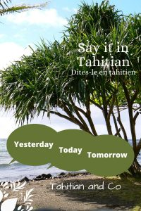 Tahitian tree on a beach with the sea on the background. To learn yesterday, today, tomorrow in Tahitian