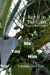 Tahitian coconut tree. To learn me, you, him in Tahitian