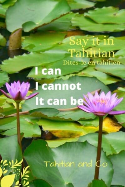 Learn how to say I can, I cannot, it can be in Tahitian