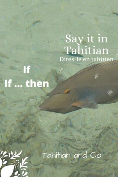 Learn how to say if in Tahitian and if ... then in Tahitian